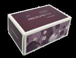 Zoet Pleasureshot Intimate Female Stimulation Serum - 1 X Single Use Application