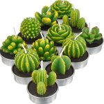 TecUnite 12 Pieces Cactus Tealight Candles Handmade Delicate Succulent Cactus Candles For Party Wedding Spa Home Decoration Gift
