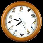South African Bird Clocks