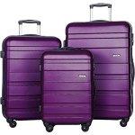 Merax Aphro 3 Piece Luggage Set Lightweight Abs Spinner Suitcase Purple
