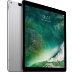Apple Pro 12.9-INCH Wifi + Cellular 256GB Space Grey