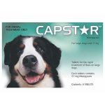 Capstar 6 Green Tablets for Large Dogs